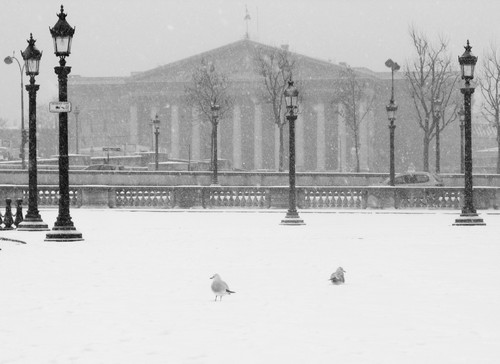 As mais belas fotos de Paris sob neve (2/5)